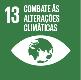 Ação contra a mudança global do clima